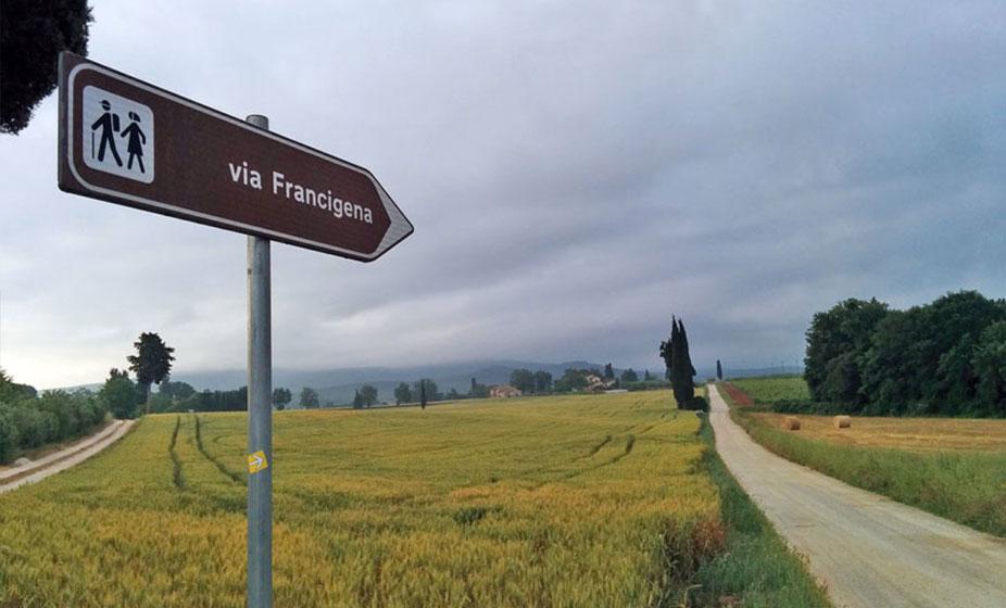 francigena-9